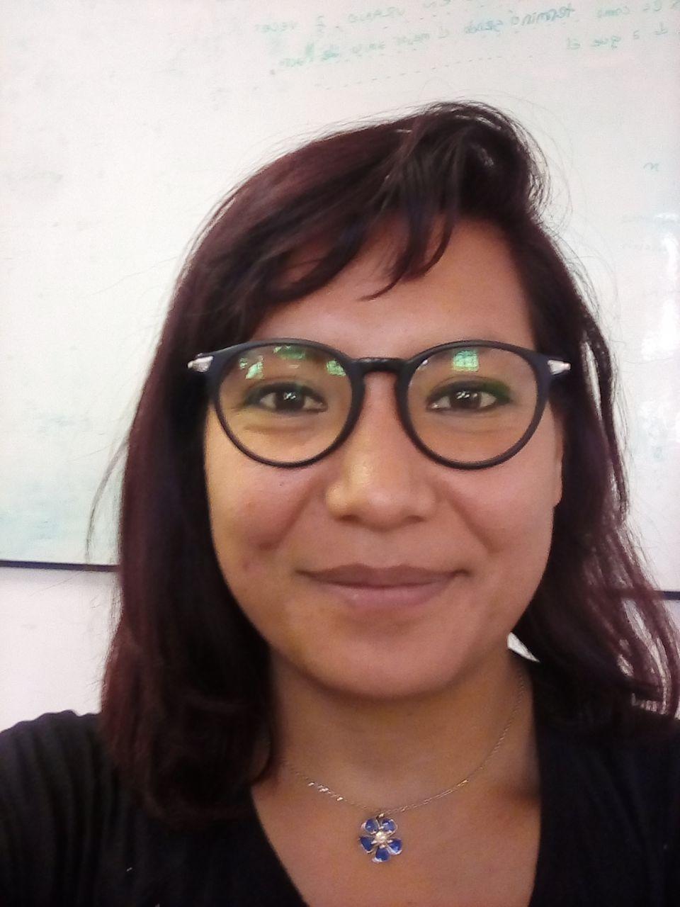 Vanessa Daza Perilla : Beca Doctoral